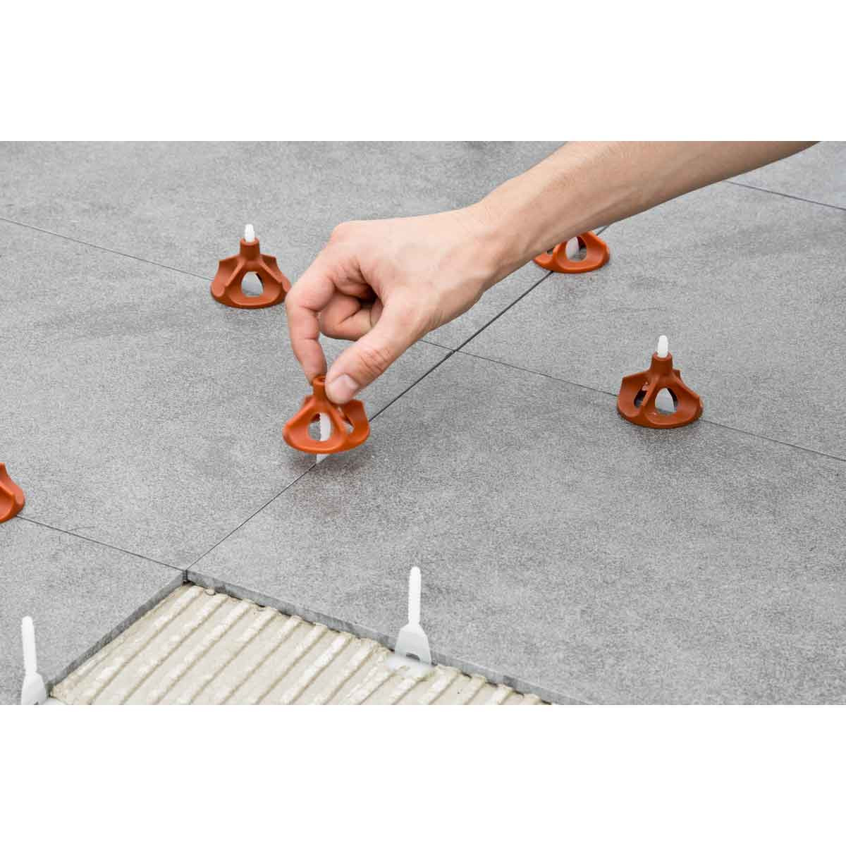 installing raimondi vite