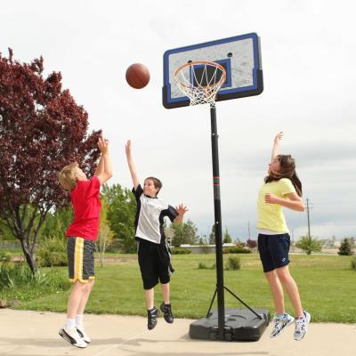 Lifetime Adjustable Portable Basketball Hoop 44 Inch Impact