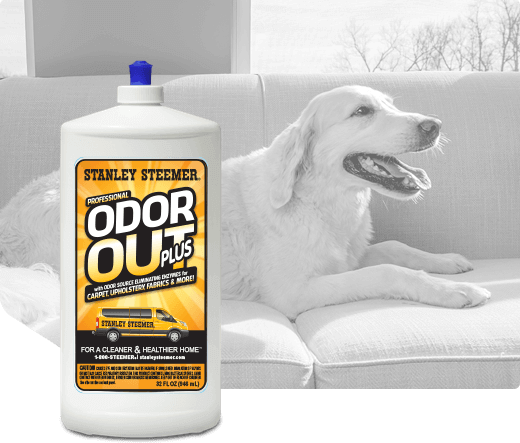 Bottle of Stanley Steemer Odor Out Plus cleaner.
