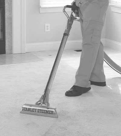 Technician professionally cleaning carpet