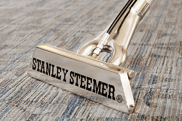 Stanley Steemer Wand Cleaning Carpet in Office