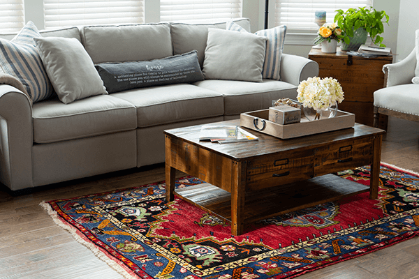 Natural light in living room with oriental rug