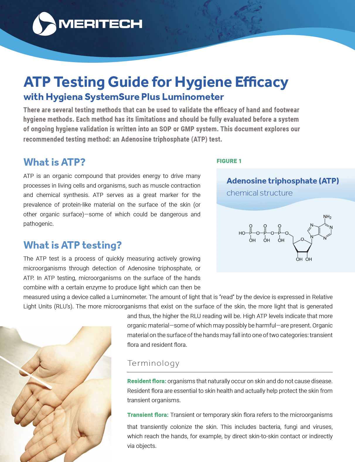 ATP Test Guide for Hand Washing Procedure Validation