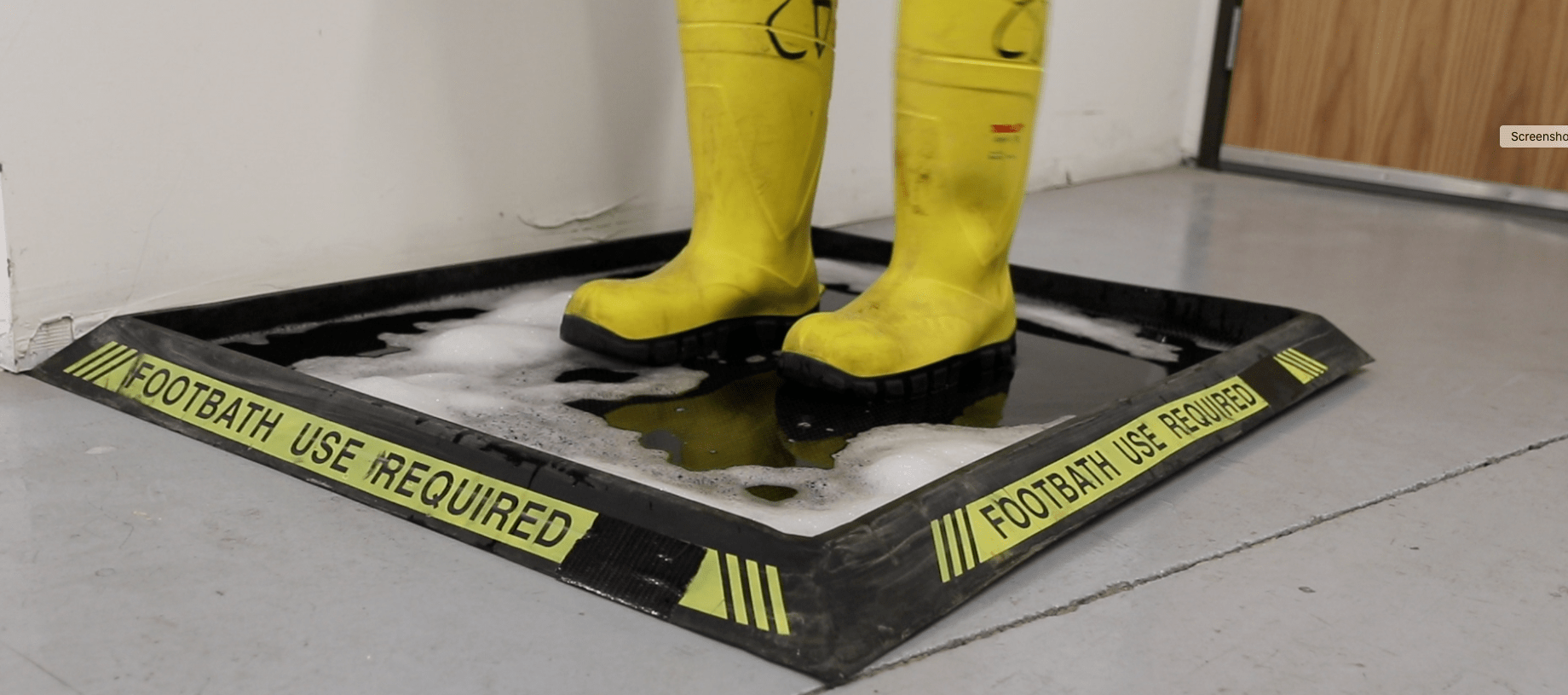 SanitizingFootwear