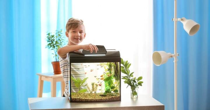 child proud of their fish tank family pet