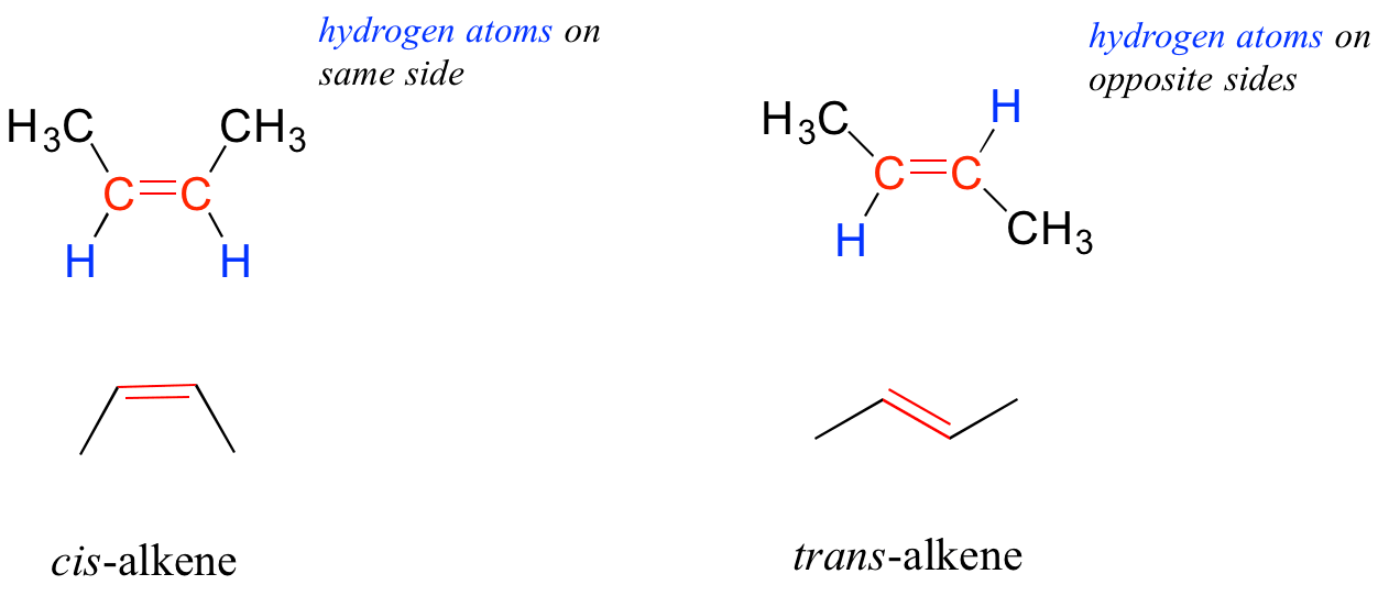 Chapter 1 The Foundations Of Biochemistry Chemistry