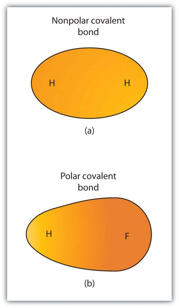 Ch103 Chapter 5 Covalent Bonds And Introduction To Organic Molecules Chemistry
