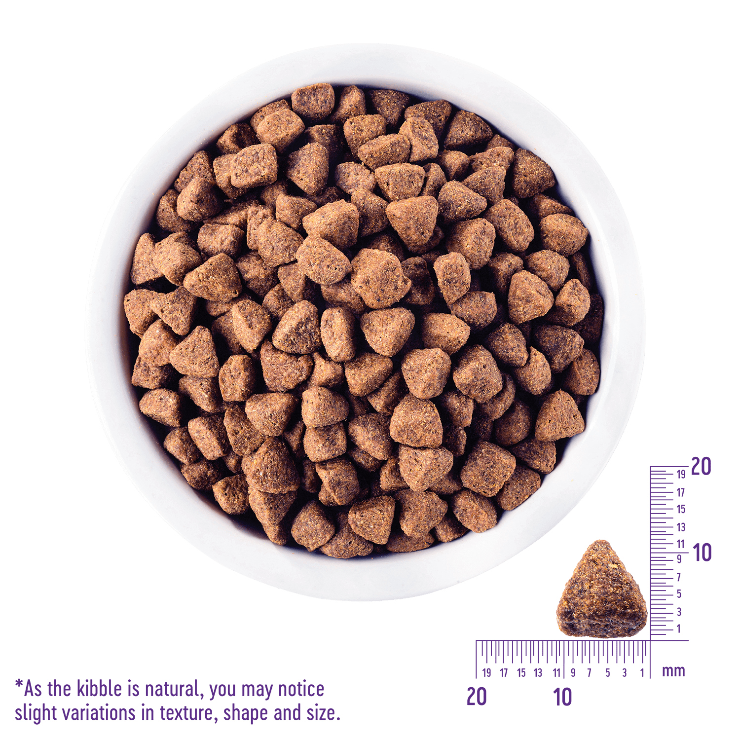 CORE Original High Protein Dry Dog Food | Wellness Pet Food