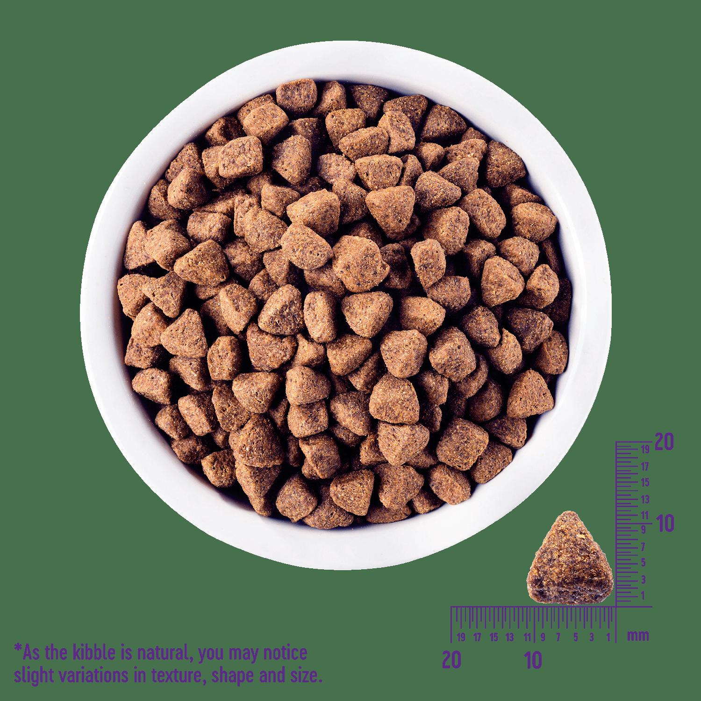 Core Wild Game Dog Food Wellness Pet Food