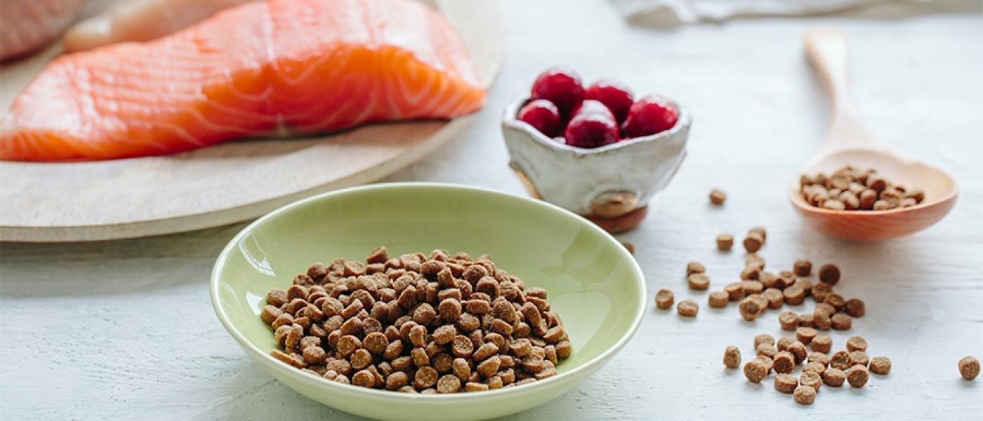 Вы покупаете сухой корм для кошек лучшего качества?