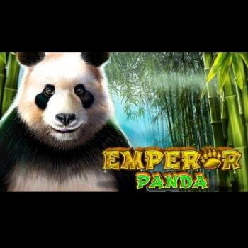 Emperor Panda