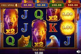 Buffalo Power: Hold and Win Slot