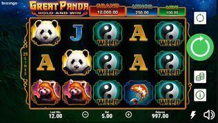 Great Panda Hold and Win Slot