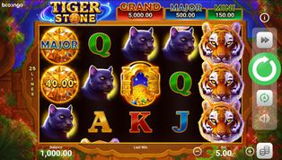 Tiger Stone: Hold and Win Slot